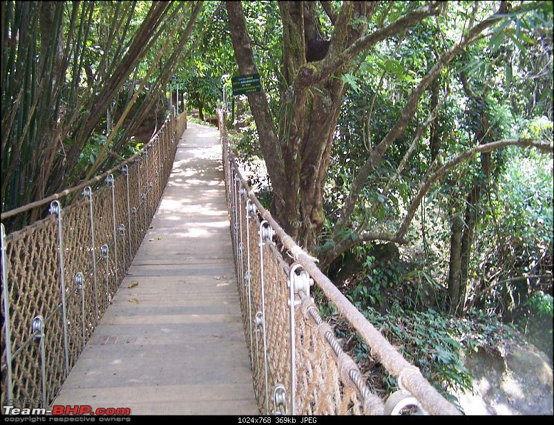 Travelogue by wifey – 4days tour to the green Wayanad and wet Kabini-picture-253.jpg