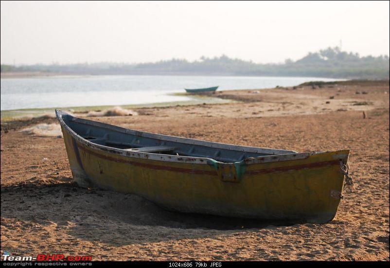 Coastal Gujarat and the Great Rann of Kutch-dsc_0581.jpg