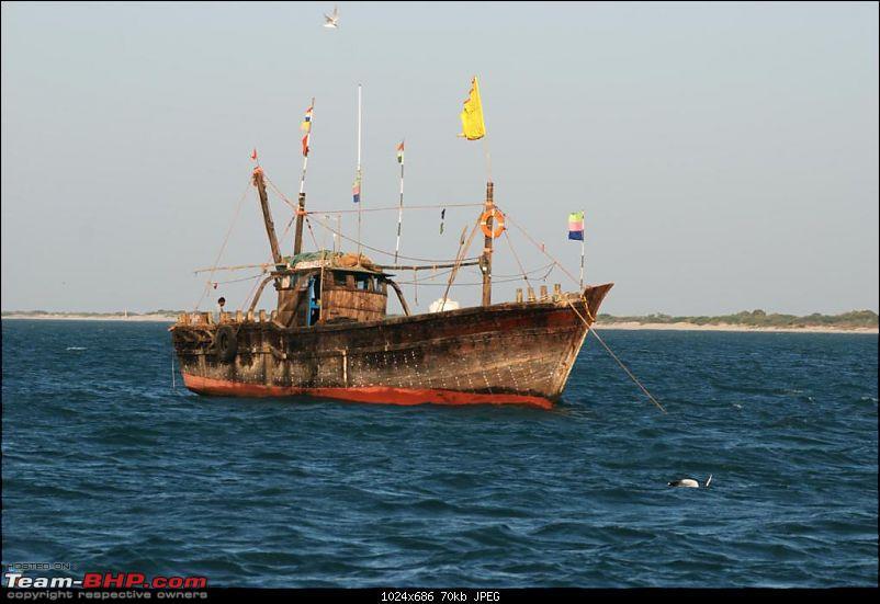 Coastal Gujarat and the Great Rann of Kutch-dsc_1042.jpg