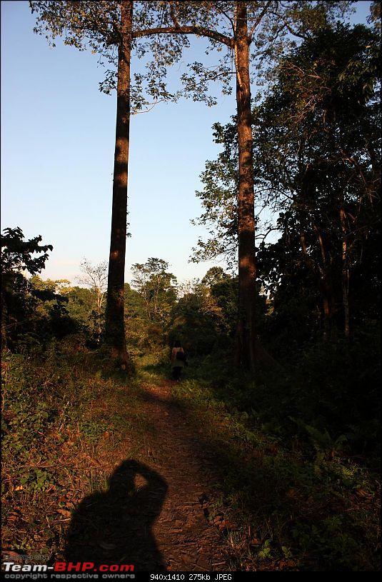Safari VTT-TMT Exotic Tour - Known and Unknown Western Arunachal and Nameri[Assam]-img_6582.jpg