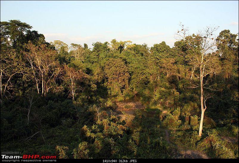Safari VTT-TMT Exotic Tour - Known and Unknown Western Arunachal and Nameri[Assam]-img_6584.jpg