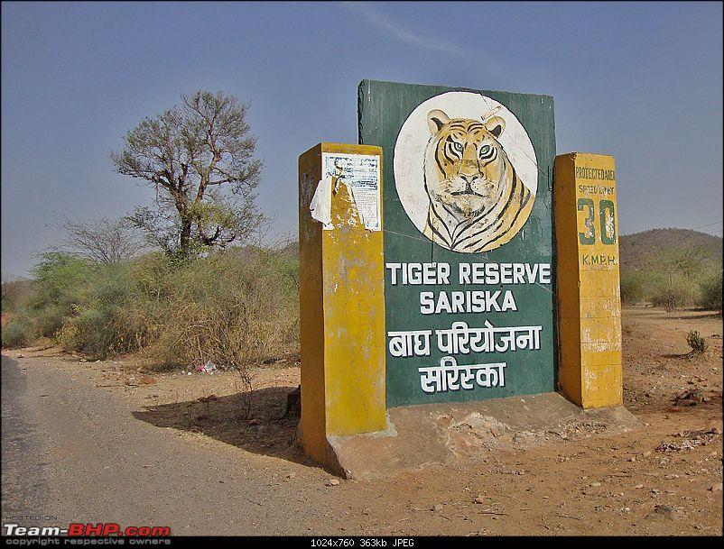 Delhi - Sariska (Pandupole) Tour-56.jpg