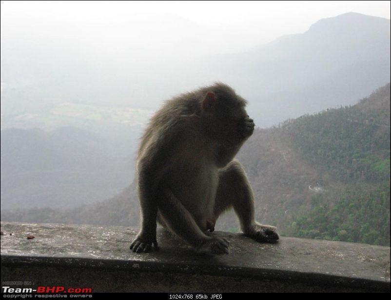 Hyderabad-Bangalore-Yercaud and Back- 1675 kms of pure Josh!!!-img_2508.jpg