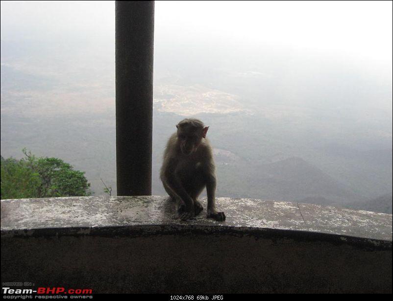 Hyderabad-Bangalore-Yercaud and Back- 1675 kms of pure Josh!!!-img_2513.jpg