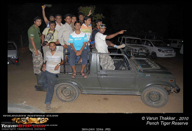 Tadoba, Pench forests, wildlife and 4 tigers!-lets-go-overloaded-.jpg