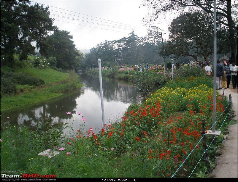 SriSha's D'Log - Trip to Munnar & Thekkady-p5030338.jpg