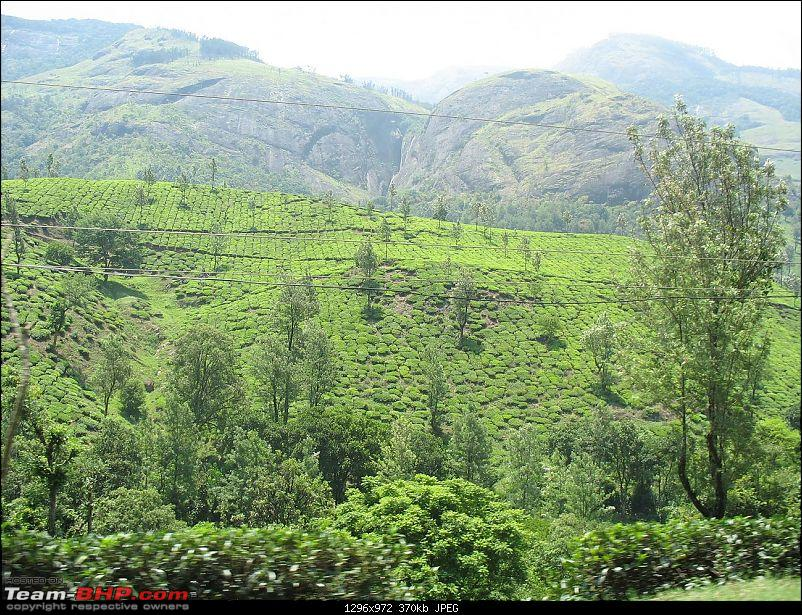 Munnar - Quick write up and a few pics-img_0673.jpg