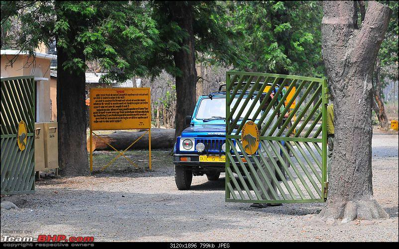 Gurgaon - Jim Corbett - Ranikhet - Gurgaon: The Unsatiated Quest-2379.jpg