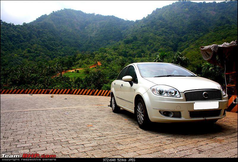 Five Days - Kochi - Kalpeta - Kodaikanal - Valparai - Kochi-img_0879_1.jpg