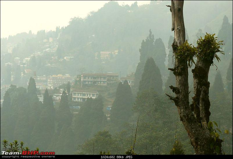 Kalimpong, Gangtok, Mirik: Fond memories of the first long trip on my Palio-p1010755.jpg