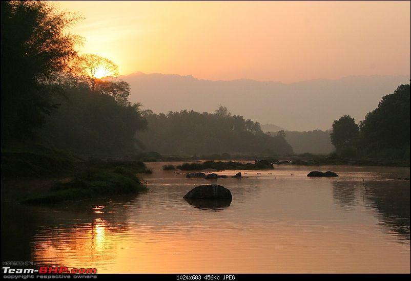 A few photos from Nilambur-img_4399.jpg