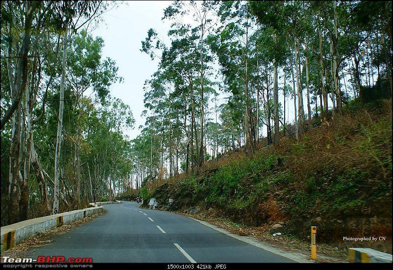 An incredible road trip to Velankanni, Kodaikanal and Ooty-6-beautiful_salem_highway.jpg