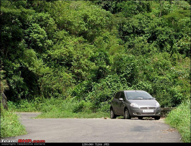 monsoon drive - vagamon->elappara->kuttikkanam->parunthumpara-img_0285.jpg