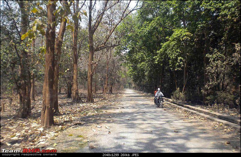 Gurgaon - Jim Corbett - Ranikhet - Gurgaon: The Unsatiated Quest-2385b.jpg