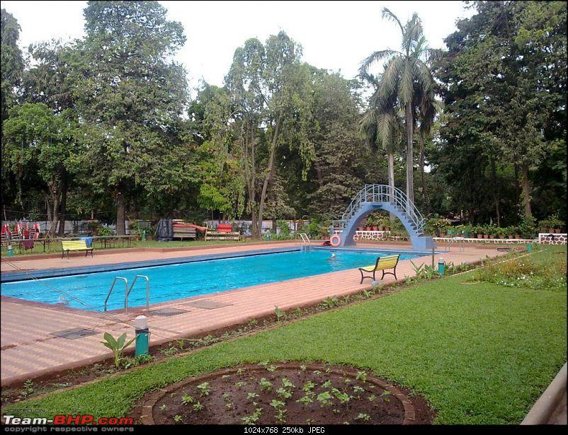 Story of a Barbeque Summer : Kuch Khatta Kuch Meetha.-18-swimming-pool-diving-platform.jpg.jpg