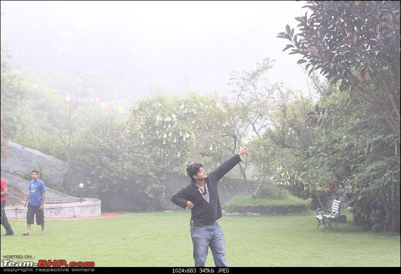 """""""The Gift of the Forest"""" -Land of misty afternoons- kodai-img_0403.jpg"""