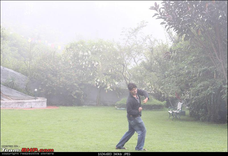 """""""The Gift of the Forest"""" -Land of misty afternoons- kodai-img_0404.jpg"""