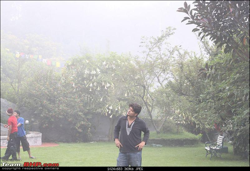 """""""The Gift of the Forest"""" -Land of misty afternoons- kodai-img_0402.jpg"""