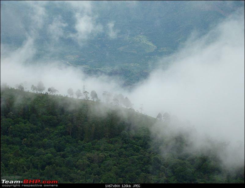 """The Gift of the Forest"" -Land of misty afternoons- kodai-dsc03770_1067x800.jpg"