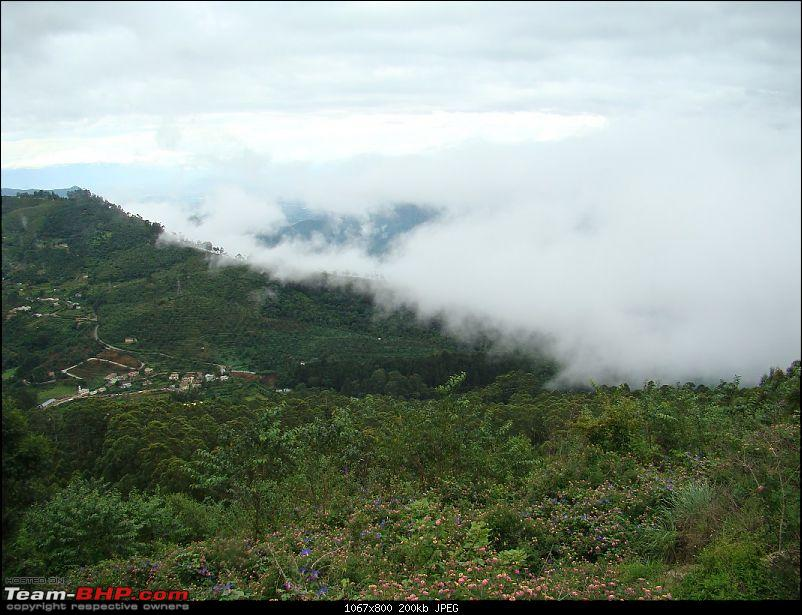 """The Gift of the Forest"" -Land of misty afternoons- kodai-dsc03771_1067x800.jpg"