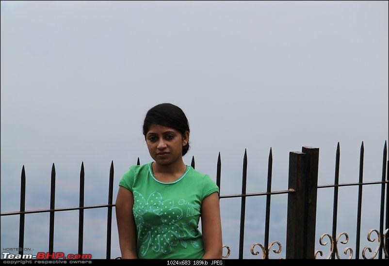"""The Gift of the Forest"" -Land of misty afternoons- kodai-img_0251.jpg"