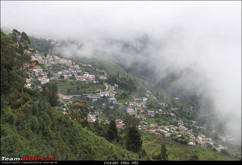"""The Gift of the Forest"" -Land of misty afternoons- kodai-img_0262.jpg"