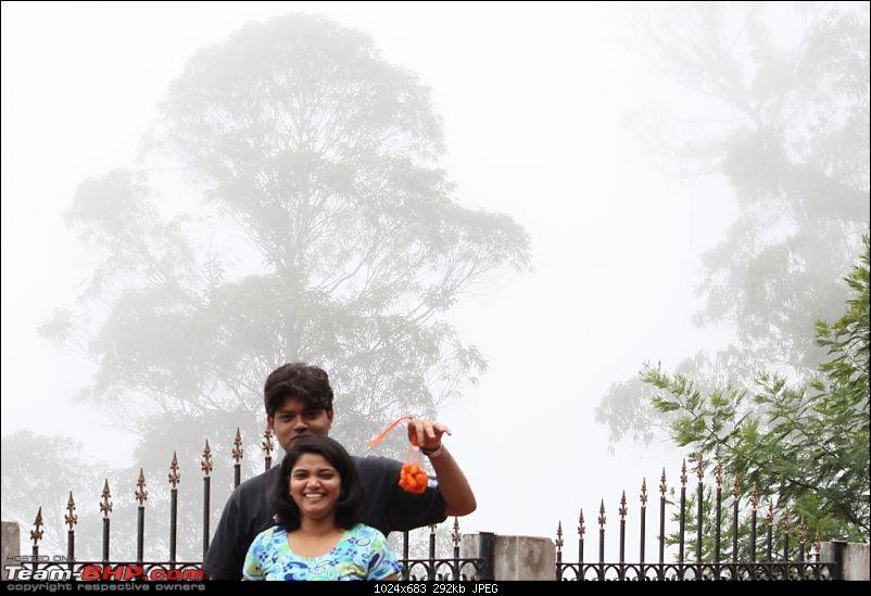 """The Gift of the Forest"" -Land of misty afternoons- kodai-img_0271.jpg"