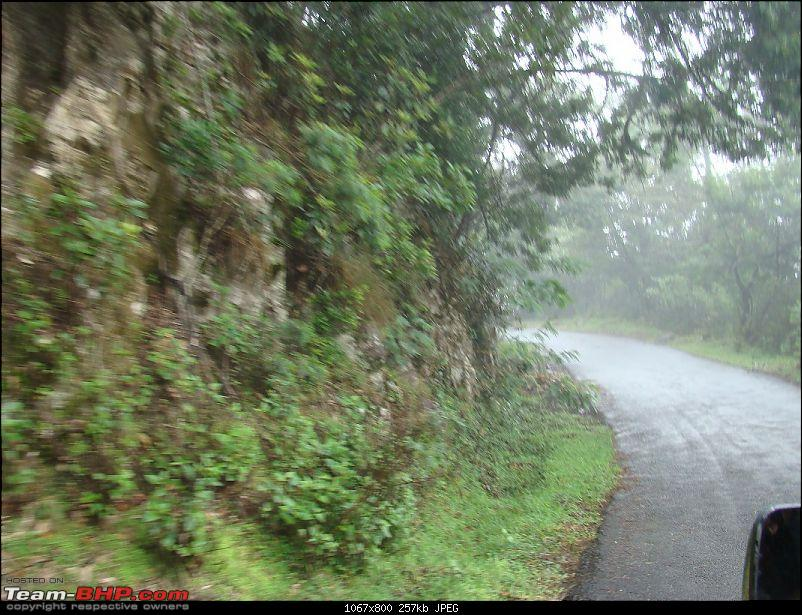 """""""The Gift of the Forest"""" -Land of misty afternoons- kodai-dsc03908_1067x800.jpg"""