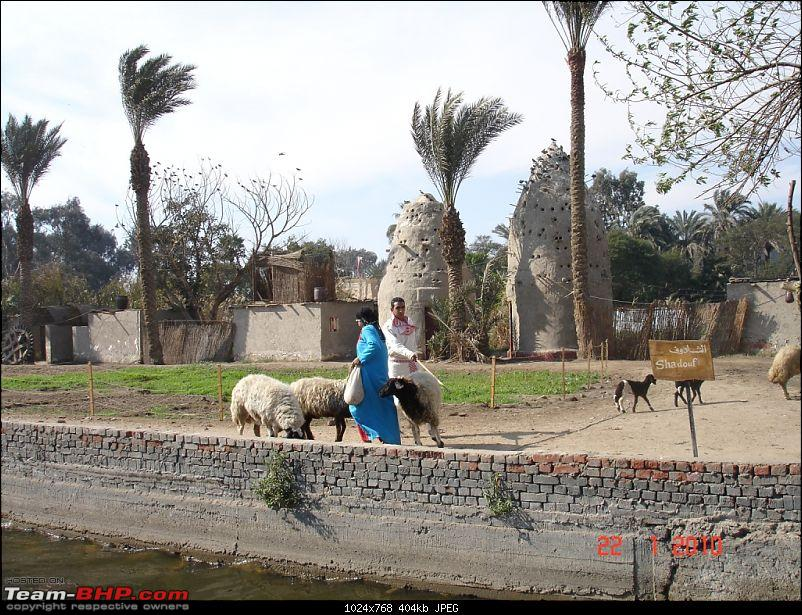 My Egypt Days : Photologue-dsc08089.jpg