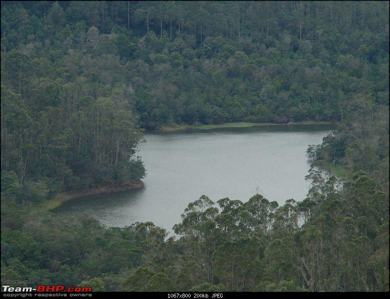 """The Gift of the Forest"" -Land of misty afternoons- kodai-dsc03969_1067x800.jpg"