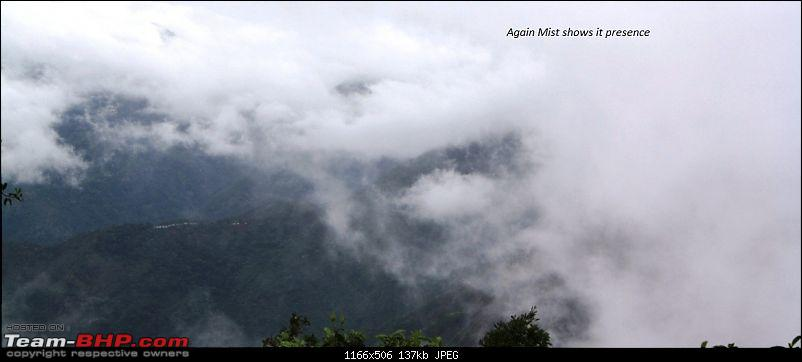"""The Gift of the Forest"" -Land of misty afternoons- kodai-img_1065.jpg"