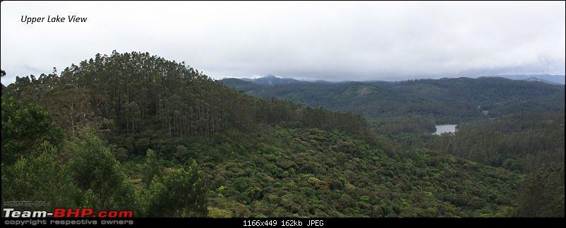 """The Gift of the Forest"" -Land of misty afternoons- kodai-img_1225.jpg"