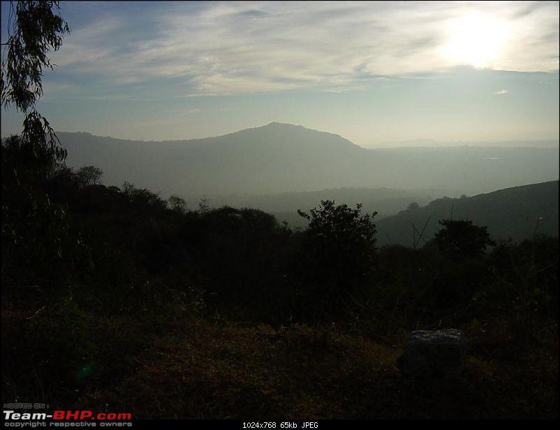 Sunday Mornings in Bangalore-dsc02612.jpg