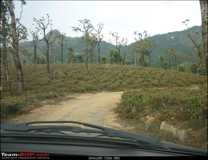 A trip out of Real estate to TEA ESTATE - Our Valparai vacation-21.jpg