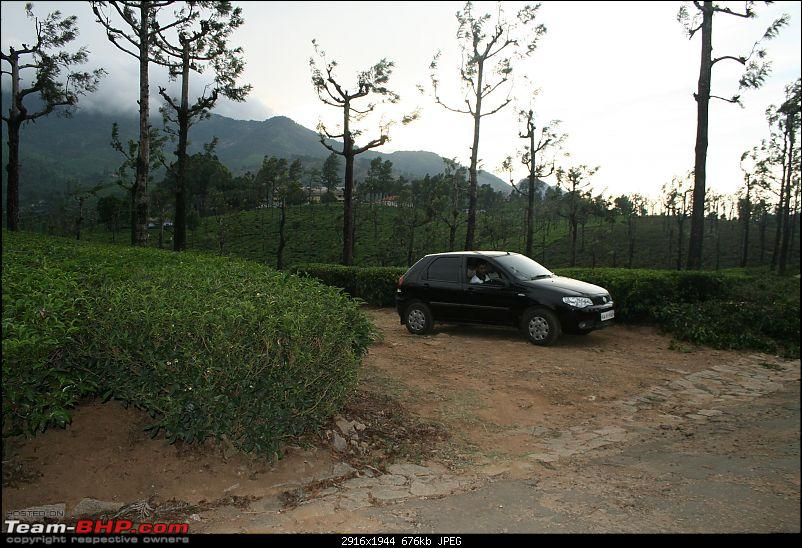 A trip out of Real estate to TEA ESTATE - Our Valparai vacation-21b.jpg