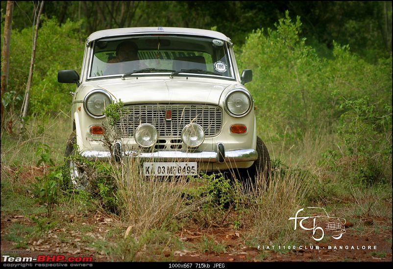 Fiat goes Off The Road - FCB drives to forests of Chikmagalur!-img_6175.jpg