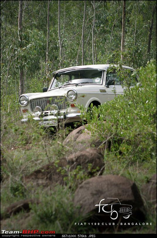Fiat goes Off The Road - FCB drives to forests of Chikmagalur!-img_6178.jpg