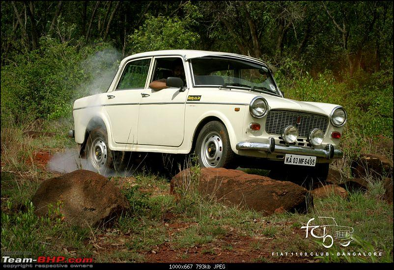 Fiat goes Off The Road - FCB drives to forests of Chikmagalur!-img_6195.jpg