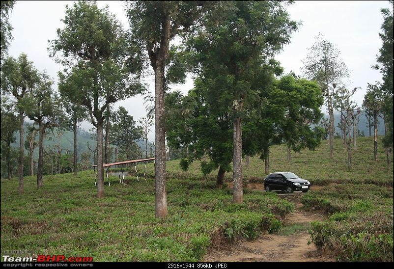 A trip out of Real estate to TEA ESTATE - Our Valparai vacation-32c1.jpg