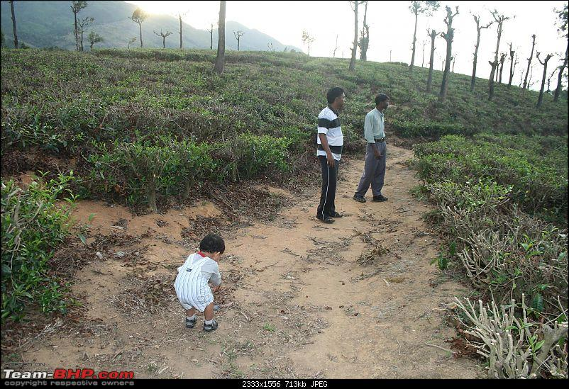 A trip out of Real estate to TEA ESTATE - Our Valparai vacation-32d1.jpg
