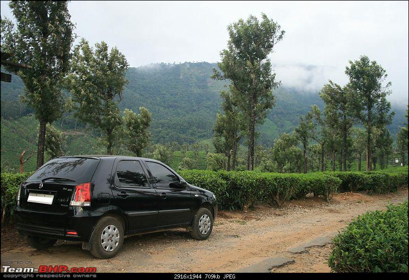 A trip out of Real estate to TEA ESTATE - Our Valparai vacation-32c.jpg