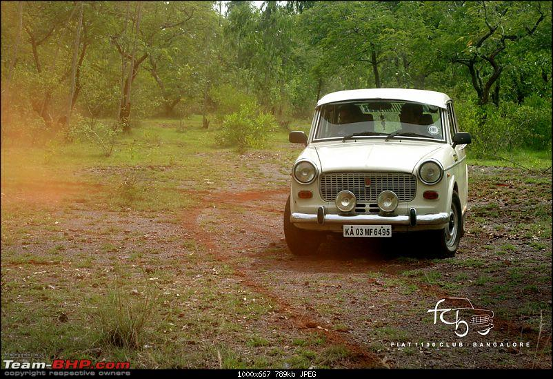 Fiat goes Off The Road - FCB drives to forests of Chikmagalur!-img_6220.jpg