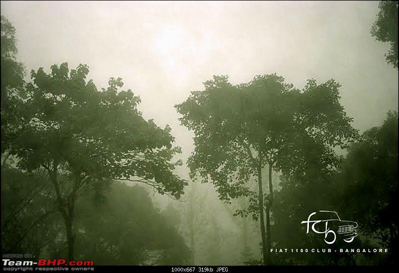 Fiat goes Off The Road - FCB drives to forests of Chikmagalur!-dsc04151.jpg
