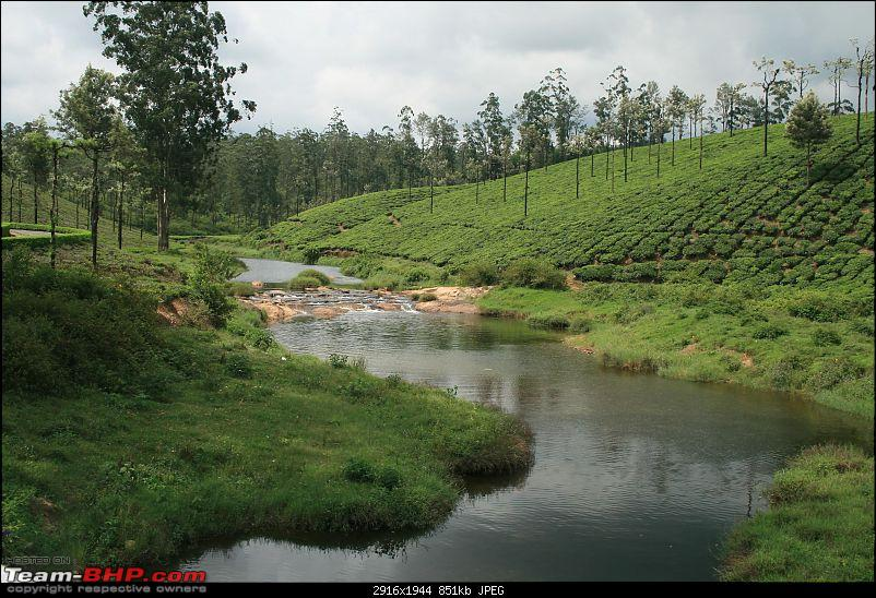 A trip out of Real estate to TEA ESTATE - Our Valparai vacation-41c.jpg