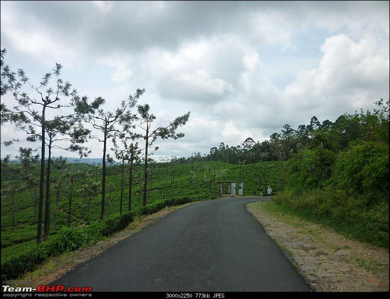 A trip out of Real estate to TEA ESTATE - Our Valparai vacation-42.jpg