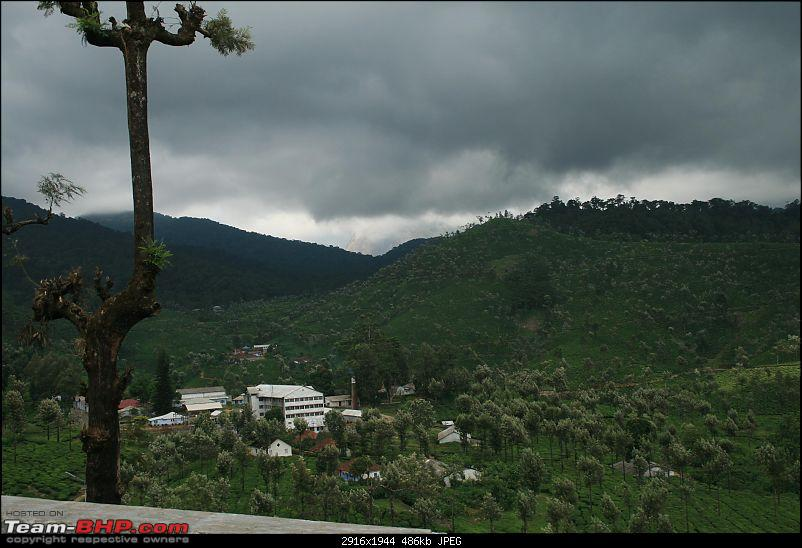 A trip out of Real estate to TEA ESTATE - Our Valparai vacation-42b.jpg