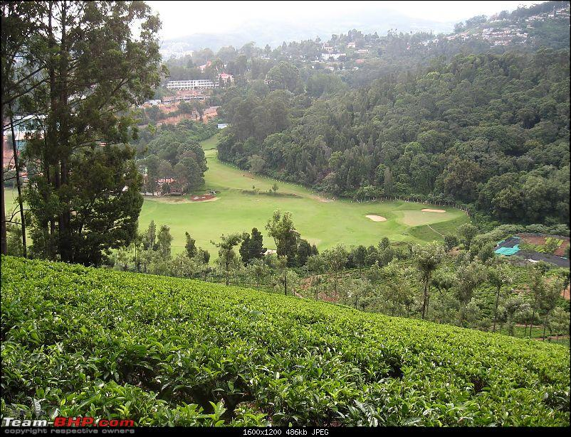 Of treks, tea plantations and temples-picture-030.jpg