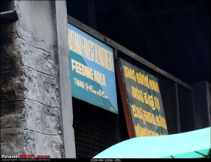 Hawk-on-fours on a pan-India tour: Delhi-Mumbai-Goa-Manipal-Coorg-Kolkata-Delhi-dubare-23k100.jpg