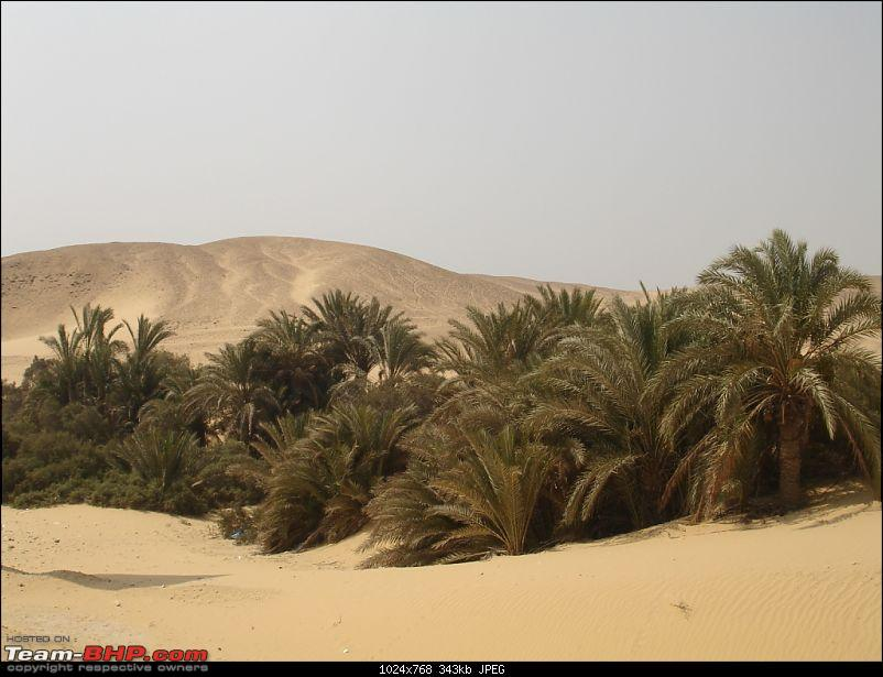 My Egypt Days : Photologue-dsc09924.jpg