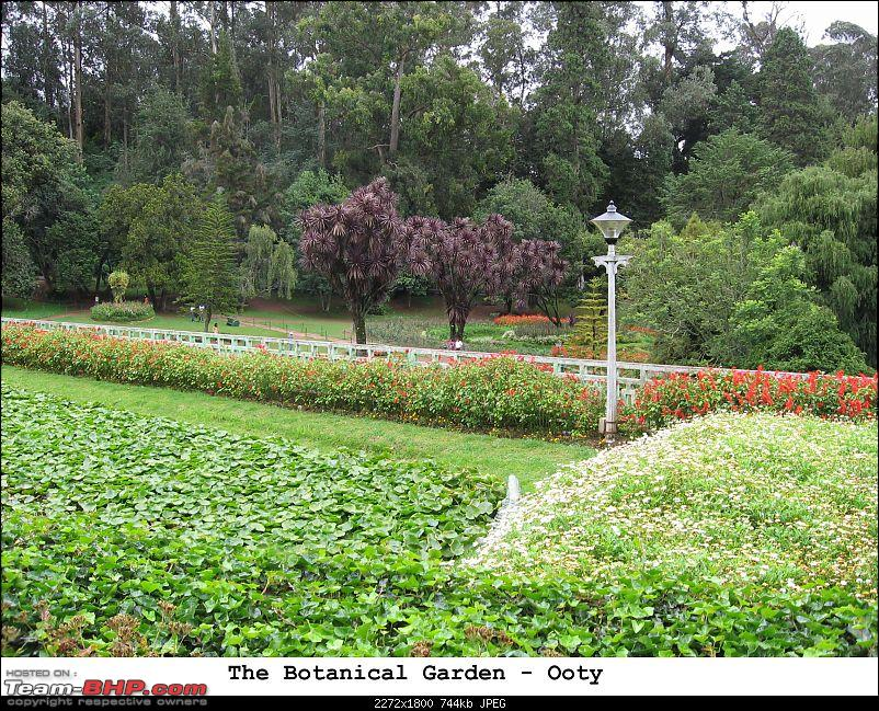 Ooty in rain! A trip thru Nanjangud, Bandipur and Brindavan Gardens while returning.-contactsheet12.jpg